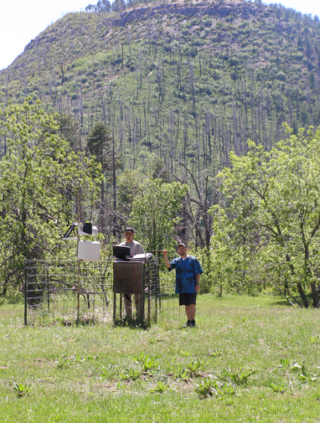 Scientists conducting research on the Sierra Ancha Experimental Forest.