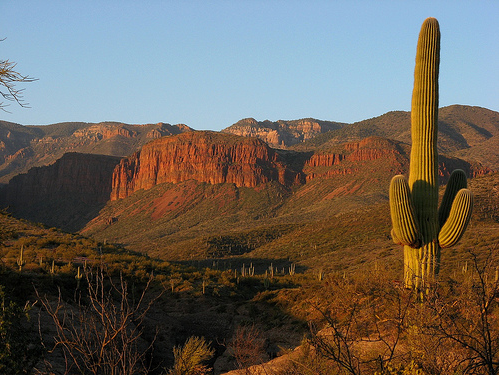 The Sierra Ancha Experimental Forest, located on the Tonto National Forest, in Arizona.