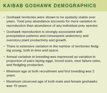 An image containing text about kaibab goshawk demographics
