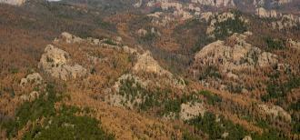 2)	2011 landscape photo of mountain pine beetle devastation, northeast of Custer looking north to Harney Peak. Photo by US Forest Service