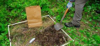 Person using shovel to remove groundcover from a forested plot