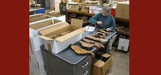 Research Forester Emily Heyerdahl prepares samples for archiving (photo by Roger Pilkington).