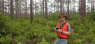 An RMRS scientist is pictured standing in dense underbrush in a pine forest. He's wearing an orange vest for visibility.
