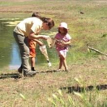 Campers explore a pond at a Junior Forester Academy event at the NAU Centennial Forest.