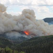 Manning creek stand replacement fire plume (photo courtesy of Roger Ottmar, USDA Forest Service Pacific Northwest Research Station).