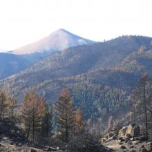 Large fires burned over 1,460,000 acres in Colorado between 1984 and 2012, with about 934,000 of that area being forested land.