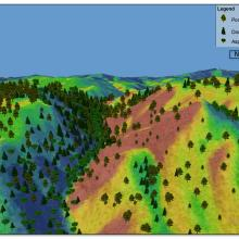 This image shows variation in forest structure reflecting the topographic influences and underlying moisture gradients. Figure credit: Jonas Feinstein,NRCS & Rob Addington,TNC