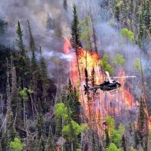 Helicopter ignition of Manning creek stand replacement fire (photo courtesy of Kreig Rasmussen, Fishlake National Forest).