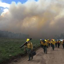 Researchers moving to get out of the heavy smoke (photo courtesy of Jill Ivie, Richfield Ranger District, Utah).