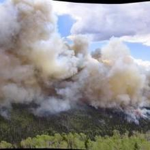 Manning creek stand replacement fire plume (photo courtesy of Kreig Rasmussen, Fishlake National Forest).