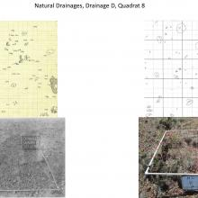 Natural Drainages, Drainage D, Quadrat 8 - photo comparisions of historical and current plots - Sierra Ancha Experimental Forest