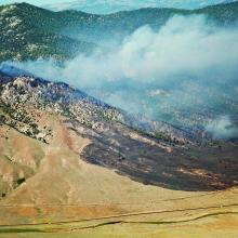 A wildfire that started in invasive annual grass adjacent to a railroad track and burned upslope into a mountain big sagebrush and Jeffrey pine ecosystem in northeast Nevada. Photo by Nolan E. Preece.