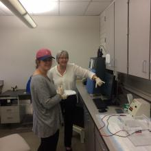 Dr. Sarah Ward and Amelia Hadid analyzing toadflax plastid DNA to determine genetic makeup of plants. Plants were collected by Sharlene Sing throughout Montana at known or probable toadflax hybridization sites.