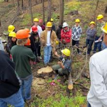 A group of students wearing hard hats gathered in the woods.
