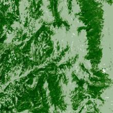 Landsat map of tree canopy cover taken in 1990 located in the central Rocky Mountains in northern Colorado, near Steamboat Springs.