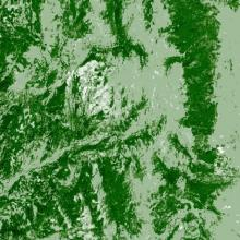Landsat map of tree canopy cover taken in 2000 located in the same location in the central Rocky Mountains in northern Colorado, near Steamboat Springs.