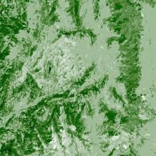 Landsat map of tree canopy cover taken in 2009 located in the same location in the central Rocky Mountains in northern Colorado, near Steamboat Springs.