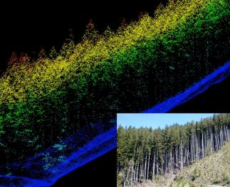 LiDAR imagery of a forested slope.