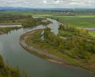 A meandering river and its floodplain