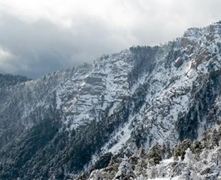 Snow falling in high-elevation forests can constitute the largest source of streamflow in some western watersheds.