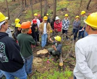 High school students touring the burn scar of the High Park Fire in northern Colorado.