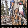 BBN_emblem.jpg – Birds and Burns Network emblem