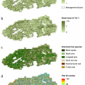 Fig. 4. Imputations of trees per hectare (a), basal area (b) and dominant tree species (c) from airborne lidar across Eglin AFB, and Plot ID (d) imputed as an ancillary variable (i.e., having no weight in the model). This model used for mapping was based