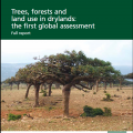 Cover of FAO report Trees, forests, and land use in drylands: the first global assessment - full report