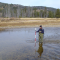 Mapping salmon nesting sites in high elevation stream in wet meadow