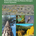Northeastern California Plateaus Bioregion Science Synthesis Document Cover