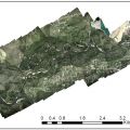 Image mosaic of the Clark Fork River during the falling limb of the hydrograph on July 2, 2014.