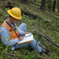 An FIA researcher in PPE sits in a forest recording data.