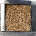 Photo: A typical ponderosa pine needle fuelbed is burned in the experiments. Photo courtesy of Shawn Urbanski / FFS.