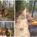 Photos, clockwise from upper left: Dan Jimenez assists with a prescribed burn in Georgia pine forests.; A prescribed fire is