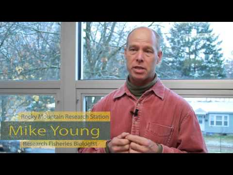 Dr. Michael Young - Research Fisheries Biologist