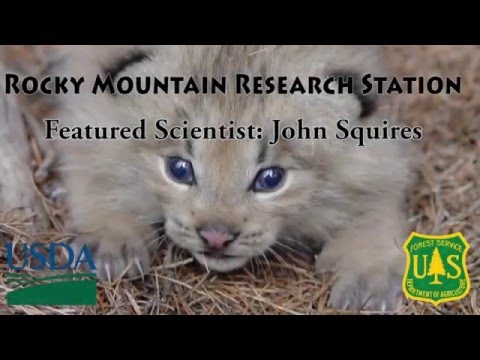 John Squires - Research Wildlife Biologist