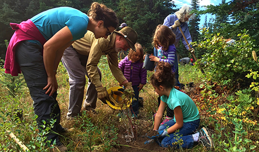 Volunteers performing trail maintenance