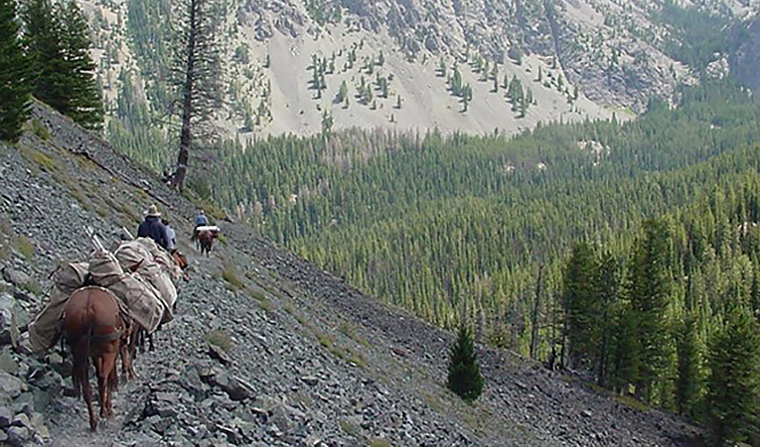 Horse riders and pack horses on a mountain trail
