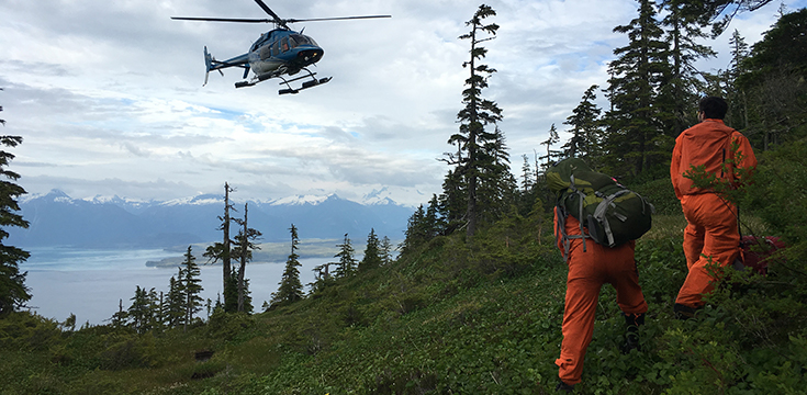 A picture of a helicopter hovering near a hillside after dropping off two forest workers.
