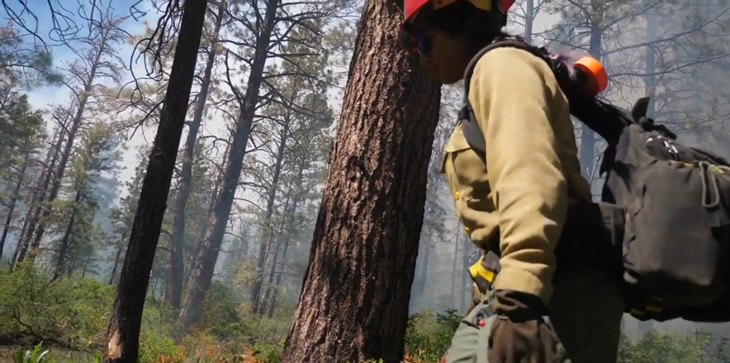 A picture of a firefighter working on the Doe Fire on the San Juan National Forest.
