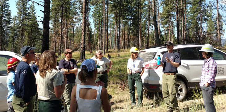 A group of forest and natural resouce managers standing in a group outside among trees discussing a topic.