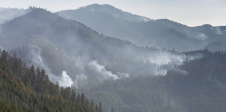 A picture of a mountain range that has smoke rising up through the forest.