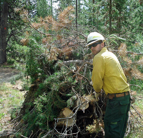 Thomas Barnett, a March 2013 graduate of the Centennial Job Corps Civilian Conservation Center, works on building slash piles to help thin unwanted forest fuels on the Boise National Forest in 2012.