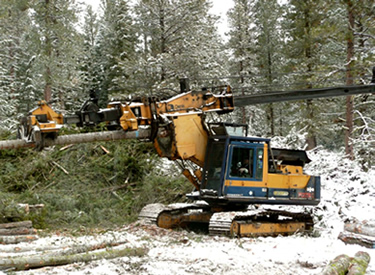 heavy machinery clearing logs from a forest floor