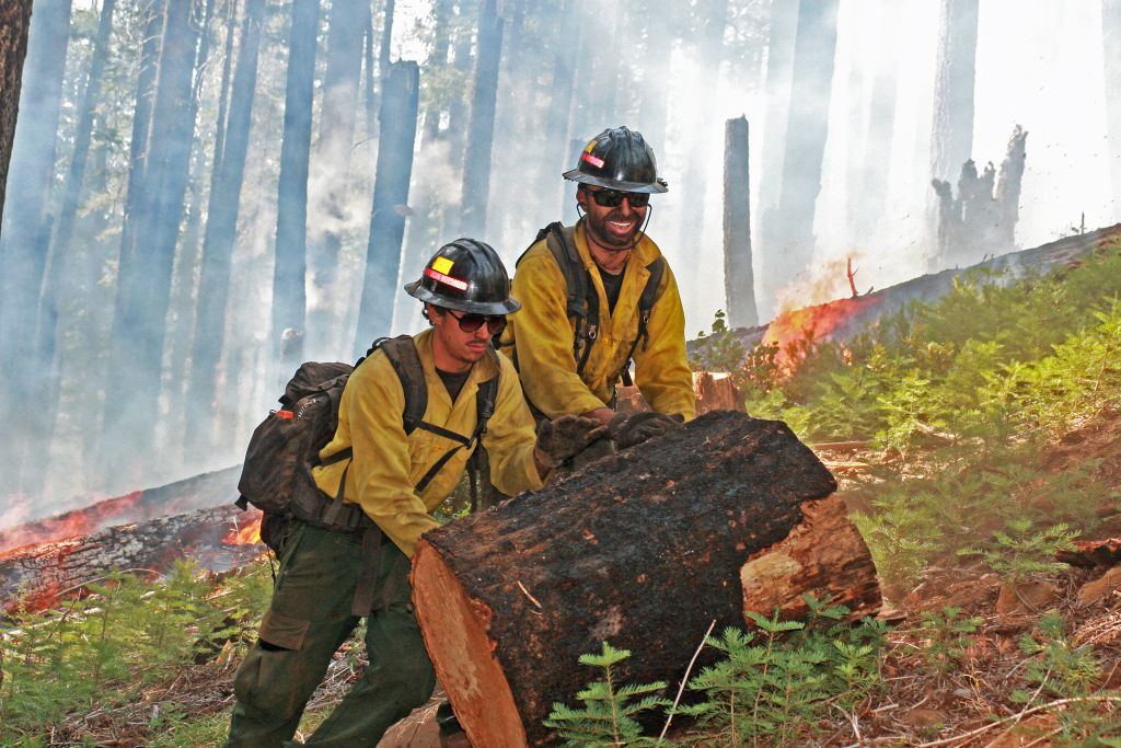 Chips Fire, California. Aug. 26, 2012. Smokey Bear Hotshots roll heavy  material out of the fire area.