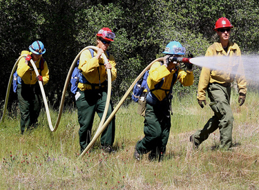 california conservation corps veterans green jobs
