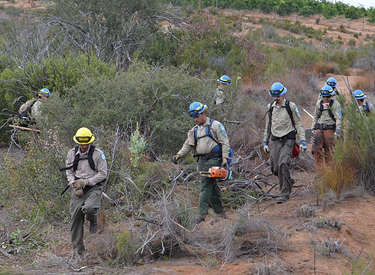 veterans california conservation corps