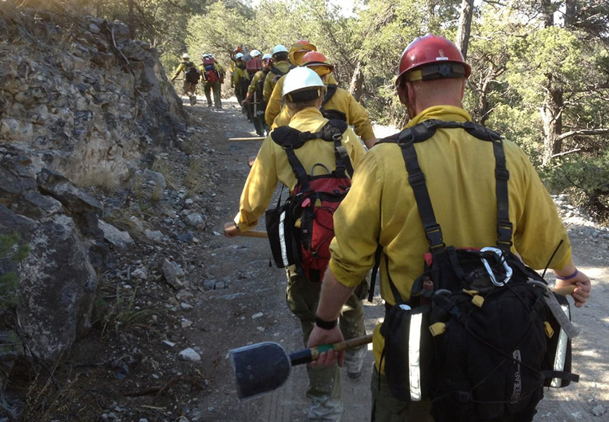 A photo of ground firefighters, Silver fire in Gila National Forest, New Mexico.