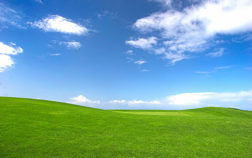 "A photo of Microsoft  photo titled ""Bliss"" for the default wallpaper on its XP operating system."