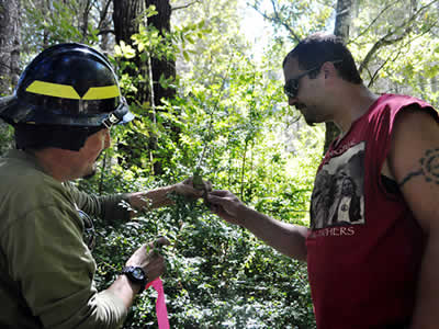 A photo of Jesse Goodwin of the Karuk Food Crew and Frank Lake of the US Forest Service examining evergreen huckleberries.